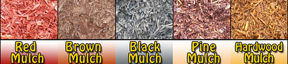 mulch varieties